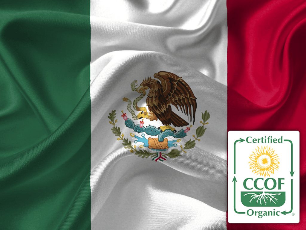 MexicoOrganic-1.png